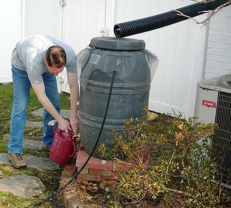 Rainwater harvesting has become increasingly popular in recent years, and with good reason. It saves water, and reduces pollution in streams through runoff.