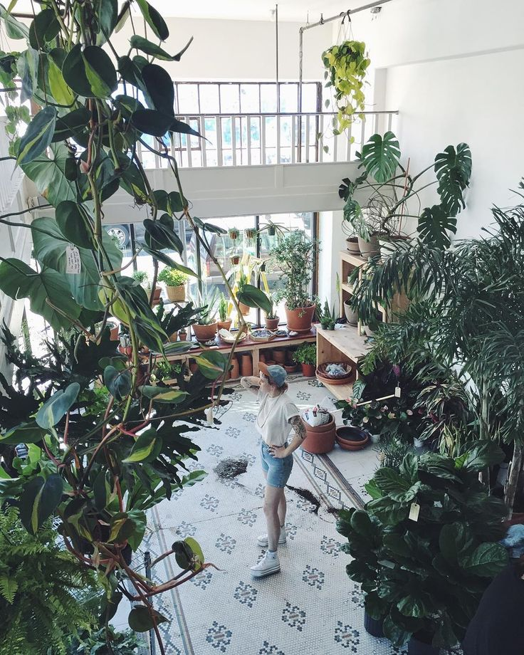 25+ Best Ideas About Florist Shop Interior On Pinterest