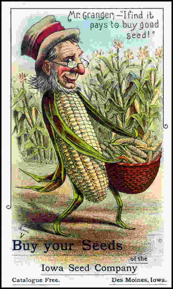 victorian 1880s squash seed packets - Google Search