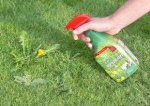 Bleach herbicide à base