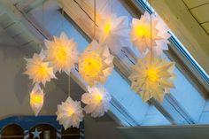 Blitzschnell und mit einfachsten Mitteln gemacht, sind diese großen, zarten Sterne aus Butterbrottüten. Diese geniale Bastelidee verbreitet sich im Moment...