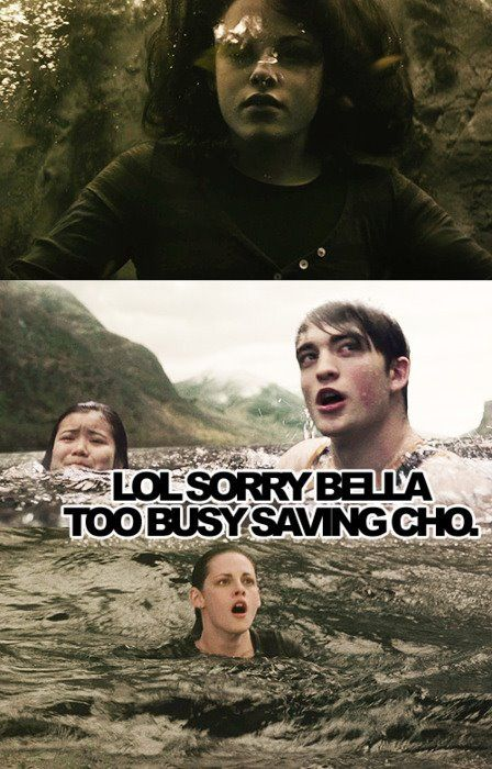 This doesn't prove my point of how Harry Potter is better than Twilight, but this is funny