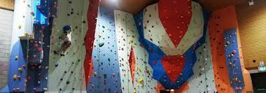 climbing wall holds - Google Search