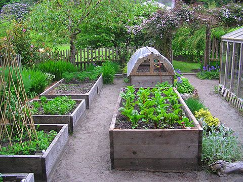 Another pinner said: So love. This backyard has it all - raised beds, a cold frame, and a greenhouse off to the side.  Can I make my backyard look half this good?