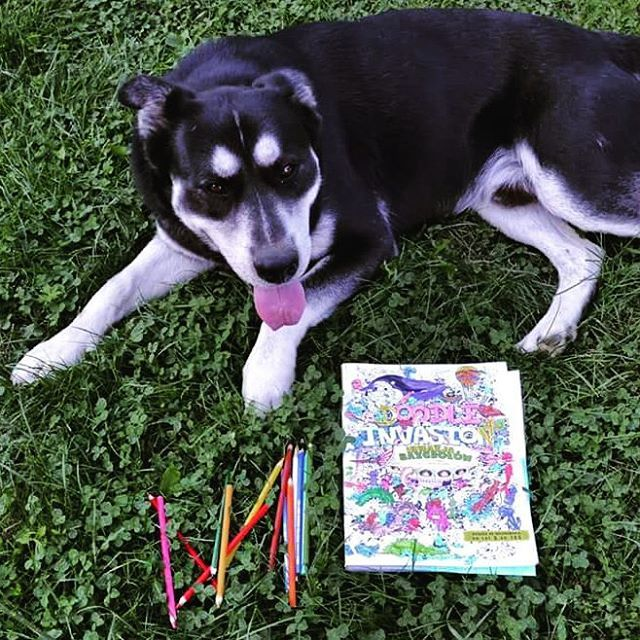 Wszyscy kochają bazgroły! :)  #inwazjabazgrolow #kolorowanka #art #kolorowanie #coloringbook #kolorowanki #colorful #kolorowo #inwazjabazgrołów #sketchystories #doodleinvasion #sztuka #color #relaks #relax #kolorujemy #dog #coloring #painting #koloruje #doodle #instalike #kredki #zifflin #artisfun #sztukakolorowania #colouring #naszaksiegarnia #pies #kolory