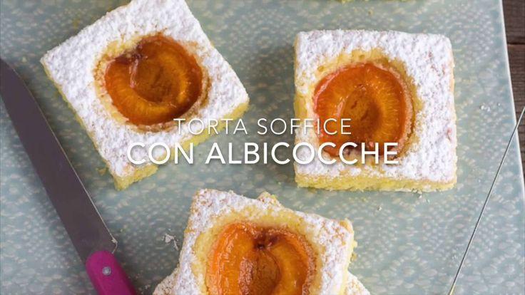 Torta soffice alle albicocche - Chiarapassion