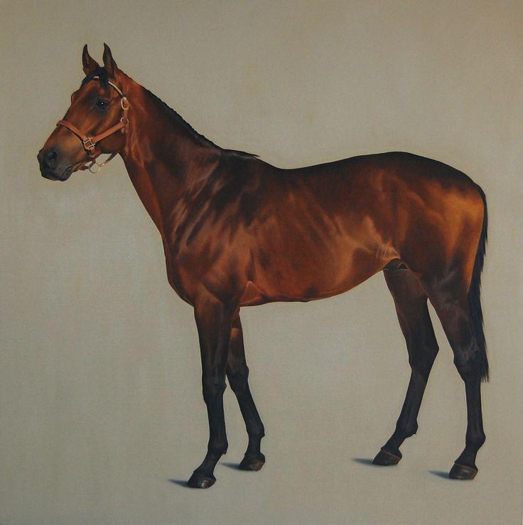 Породистые лошади, 2009