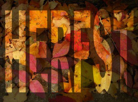 Herfst = lekker stoeien met Photoshop achter de computer