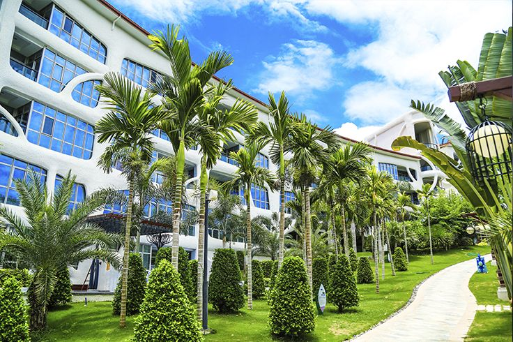 In #Sanya, you may see the palm trees everywhere, on the beach, along the roads…