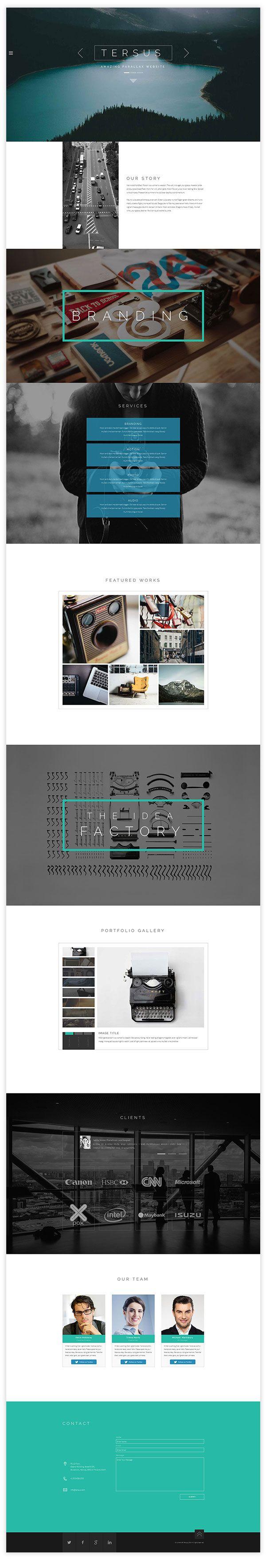 Tersus - Business Portfolio Parallax Adobe Muse Template