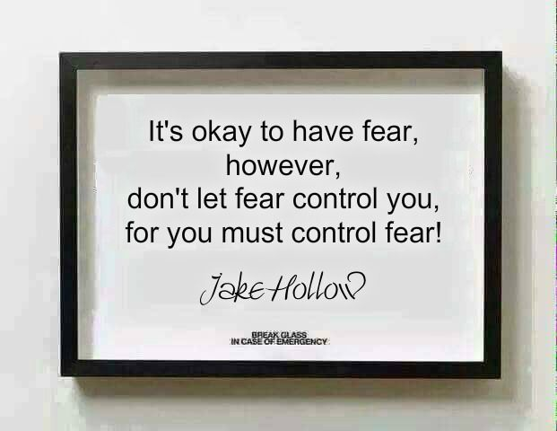 It's okay to have fear, however, don't let fear control you, for you must control fear! - Jake Hollow
