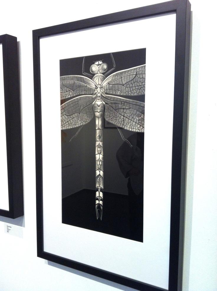 Odonata, Brunswick Street Gallery, Fitzroy, Melbourne
