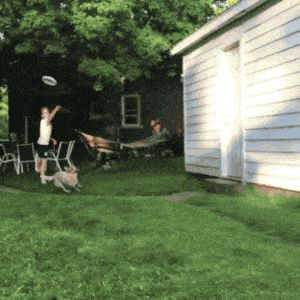21 Best GIFs Of All Time Of The Week #204