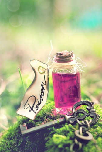 fairytale: Wonderland Parties, Dreams Rooms, Alice In Wonderland, Open Books, Bottle, Poisons, Drinks, Cool Tattoo, Fairies Tales
