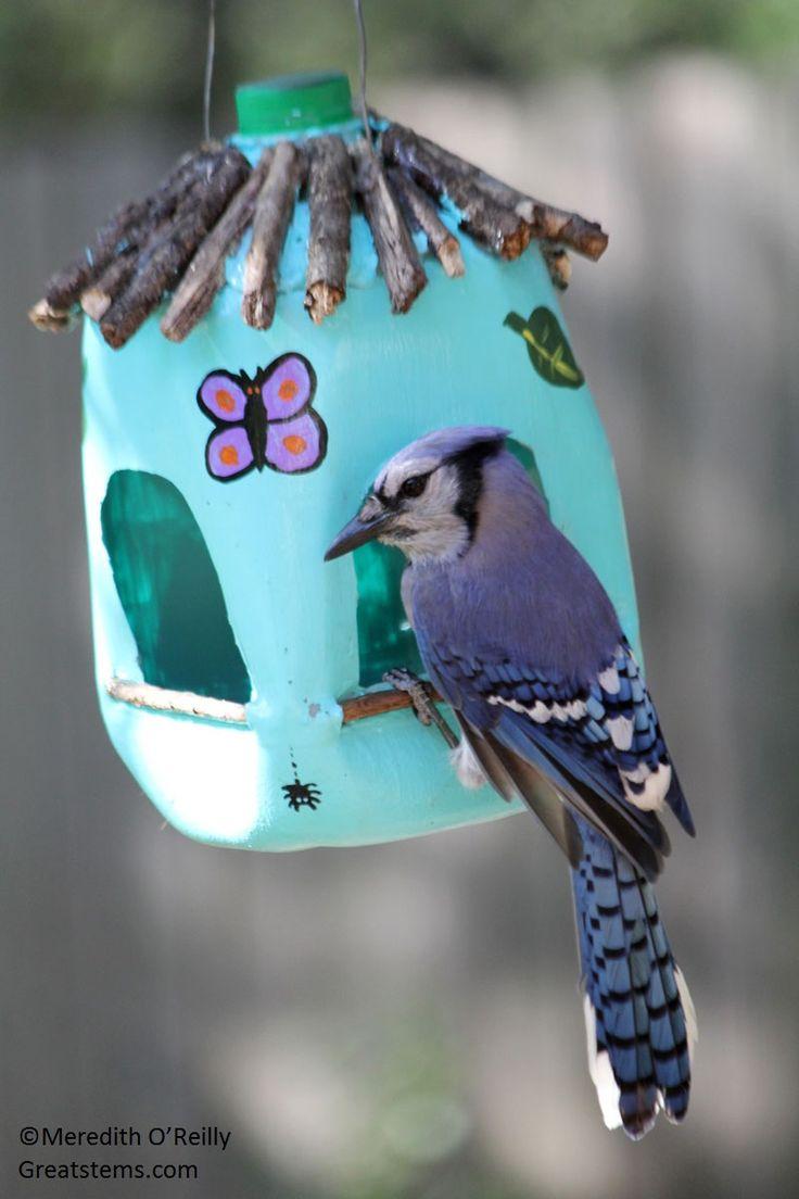 Milk Jug bird feeder soooo cute and looks sooooo fun to make wonder if you could make and sell them at yard sales hmmmmmmm