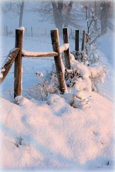 winter scene with snow topped fence