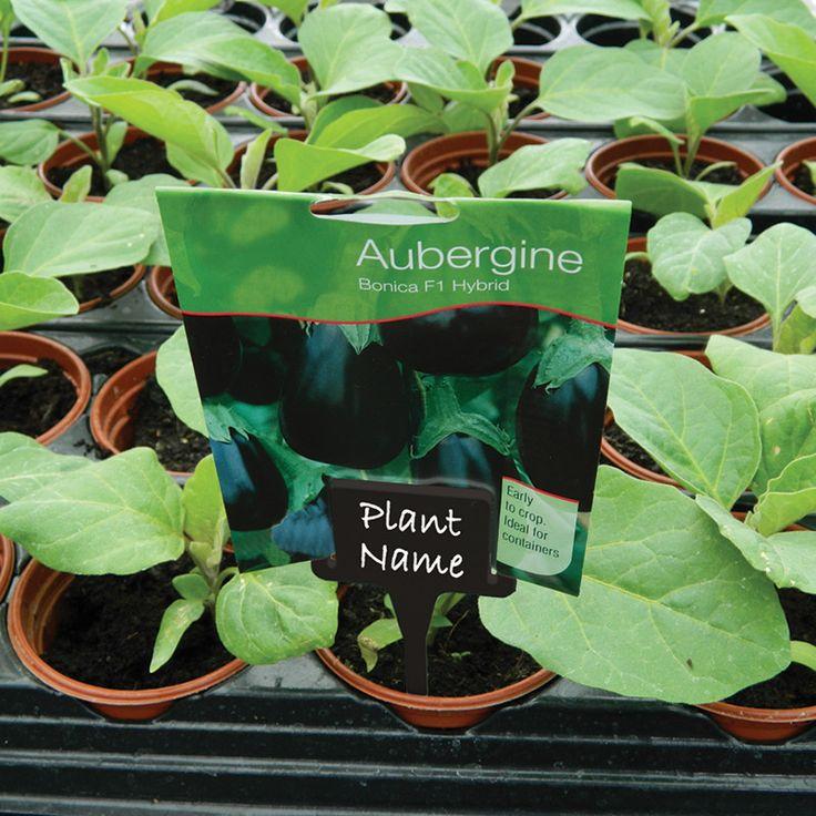 Plantetiketter med hållare #Plantetiketter
