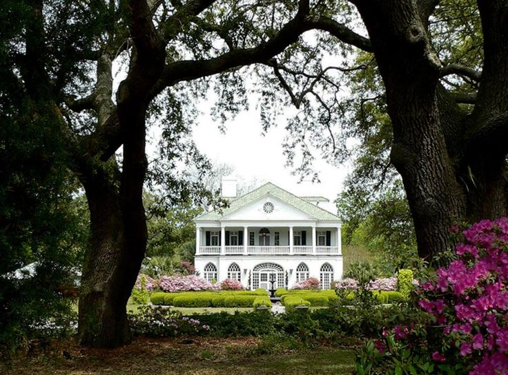 17 best images about beautiful charleston south carolina for Best home builders in south carolina