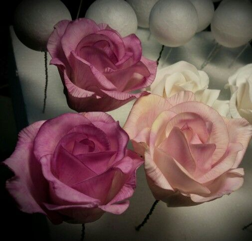 Roses www.facebook.com/cakesbyraewyn  #sugarflowers #sugarflowerclasses #sugarrose