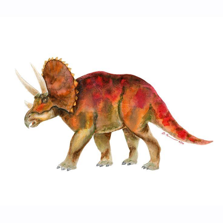 66 Best Ceratopsians Images On Pinterest
