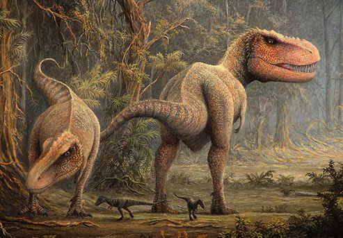 Real Dinosaur Pictures Tyrannosaurus Rex | Home ›› Dinosaur Pictures ›› Tyrannosaurus Rex Hunting Art