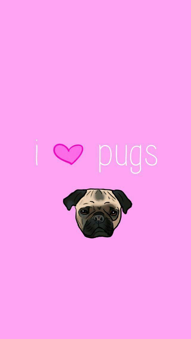I Love Pugs Cutepuppy3wallpaper Pug Wallpaper Pug Cartoon Cute Pugs