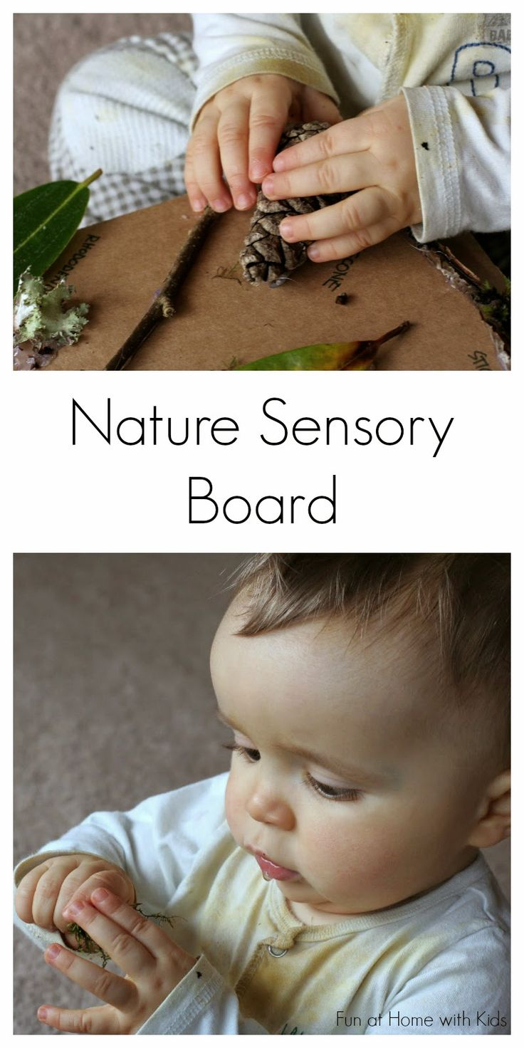 Nature Sensory Board from Fun at Home with Kids