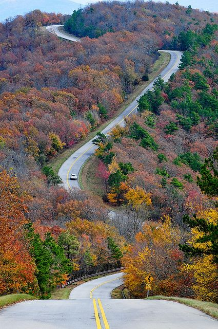 Road to Talimena, AR photo by PetrusJohannes, via Flickr
