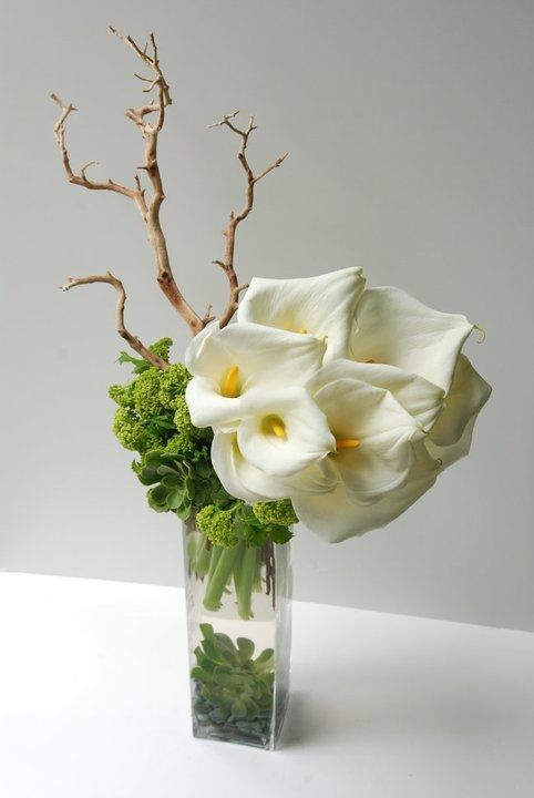 flower arranging ideas: Modern calla with manznaita and succulents