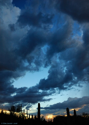 Sonoran desert Storm Sunset