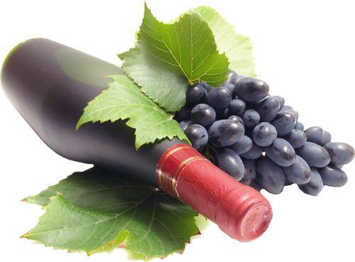 grape_PNG1381951939.png