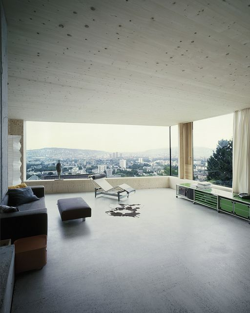 Architects and artists house at the foot of the üetliberg zurich fuhrimann hächler architects