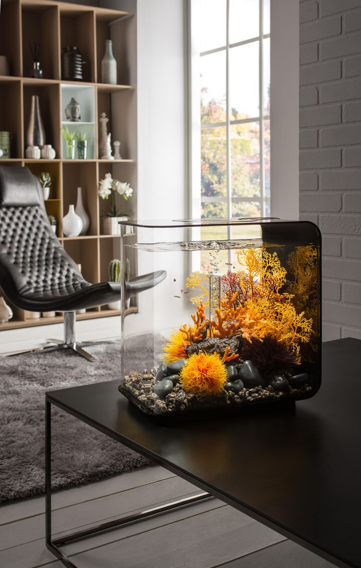 Beautiful Aquariums - biOrb FLOW 30. 8 US Gallons. Easy to maintain, sleek acrylic aquarium.