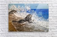 Acrylic Print,  for sale, shore,seascape,coastal,scene,waves,water,sandy,beach,rock,crashing,breaking,splashing,rough,spray,lace,blue,impressive,beautiful,fine art,virtual,deviant,awesome,cool,artwork, decorative,items,ideas, pictorem