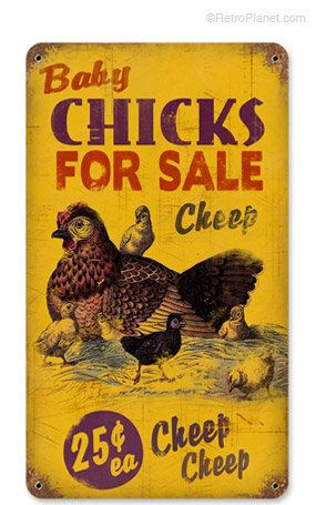 Cheap Baby Chicks for Sale Tin Sign | Tin Farm Signs | RetroPlanet.com on Wanelo