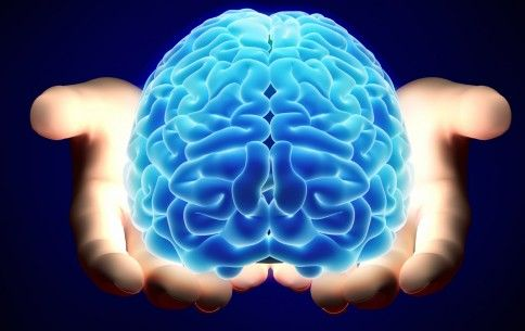 Our brains are by far one of our most important organs. Here are 10 of the most surprising things our brains do and what we can learn from them: