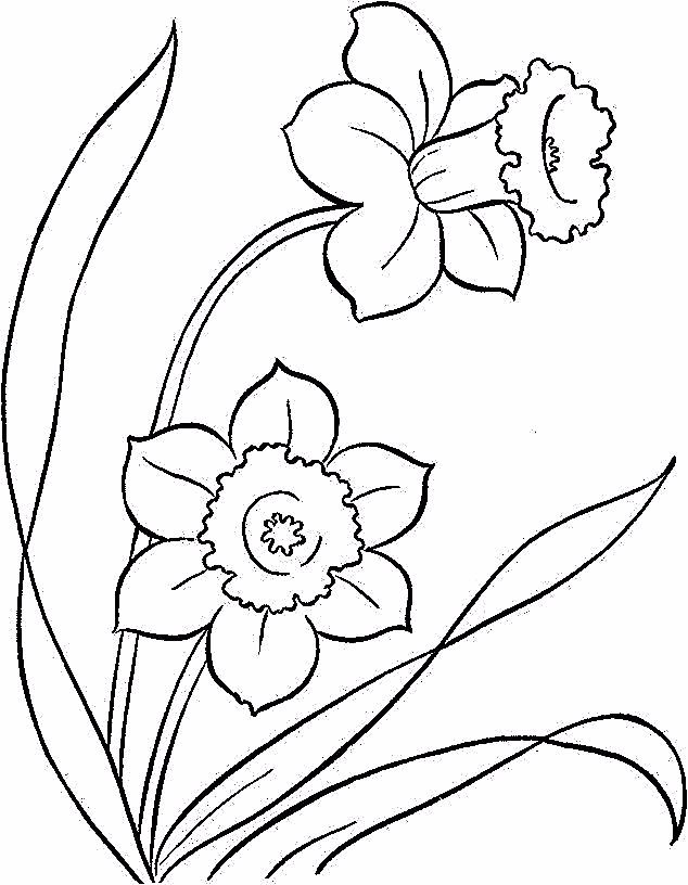 Flower Page Printable Coloring Sheets Coloring Pages Free Printable Easter D In 2020 Printable Flower Coloring Pages Poppy Coloring Page Spring Coloring Pages