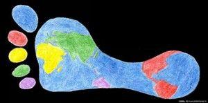 Nitrogen Footprint