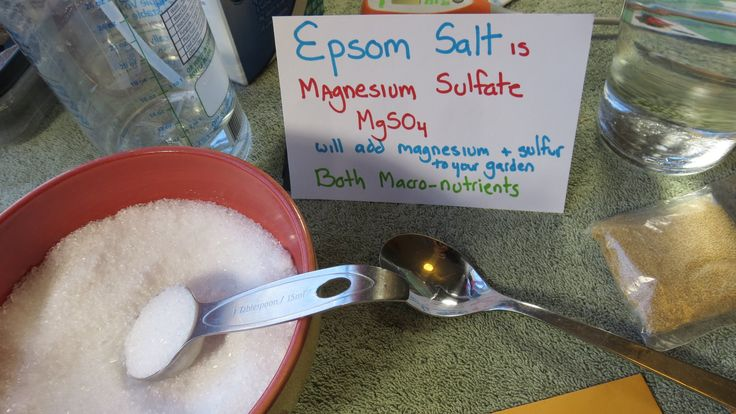 Why And How To Use Epsom Salt In Your Vegetable Garden