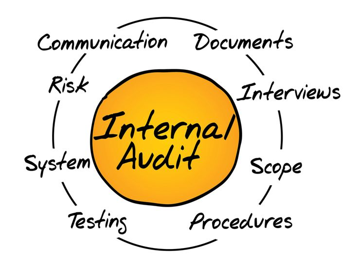 Ciclo audit per business analysis