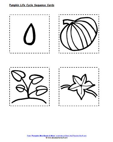 Pumpkin Life Cycle Sequencing Cards   A to Z Teacher Stuff Printable Pages and Worksheets