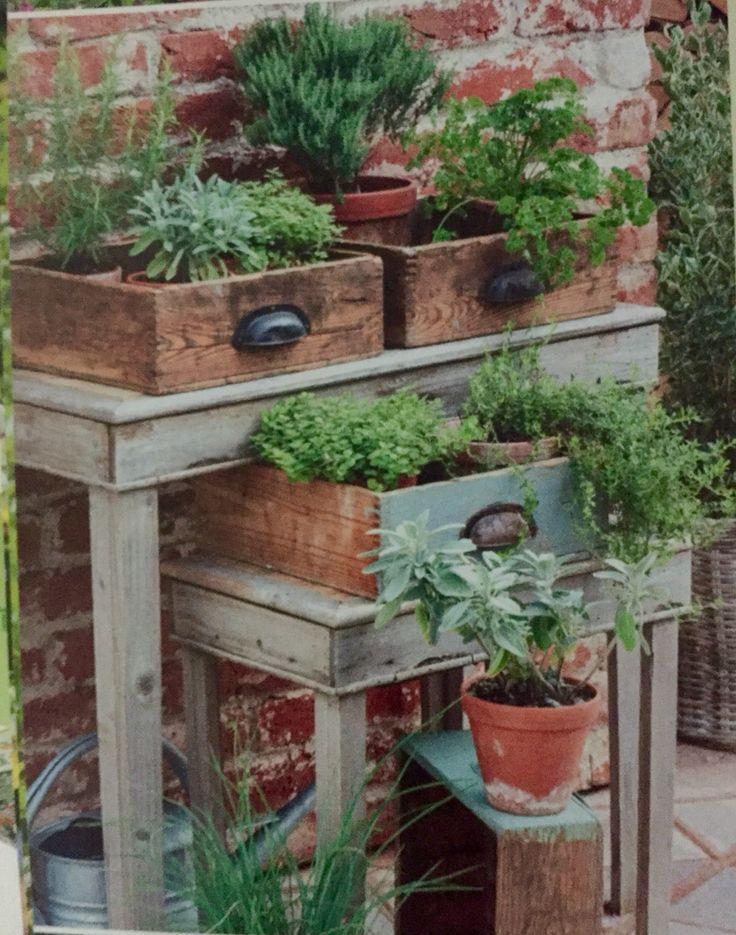 alte Schubladen bepflanzt