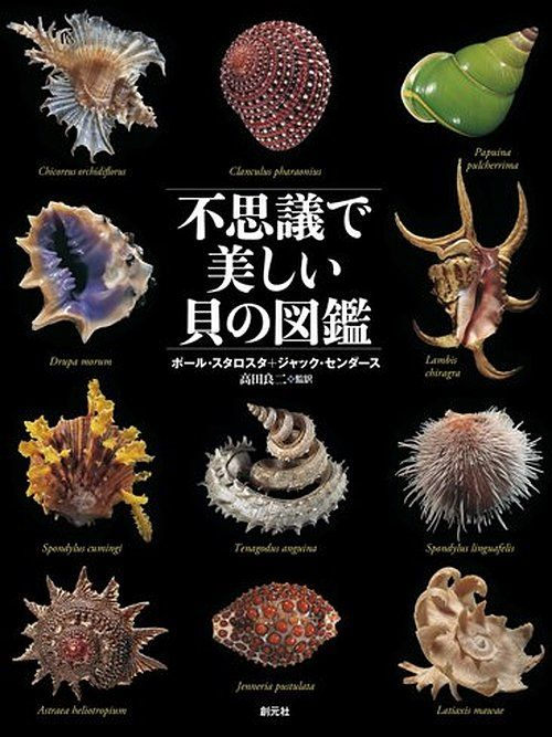 Amazon.co.jp: 不思議で美しい貝の図鑑: ポール・スタロスタ, ジャック・センダース, 高田良二