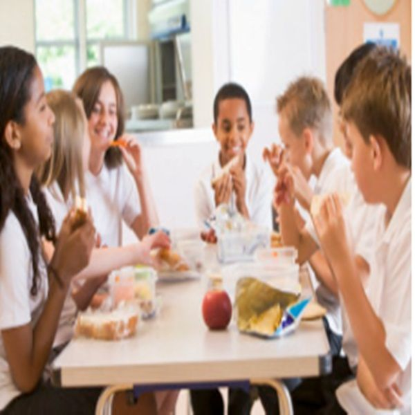 Nutrition education and information tools for the professionals Education professionals could play a vital role in promoting healthy