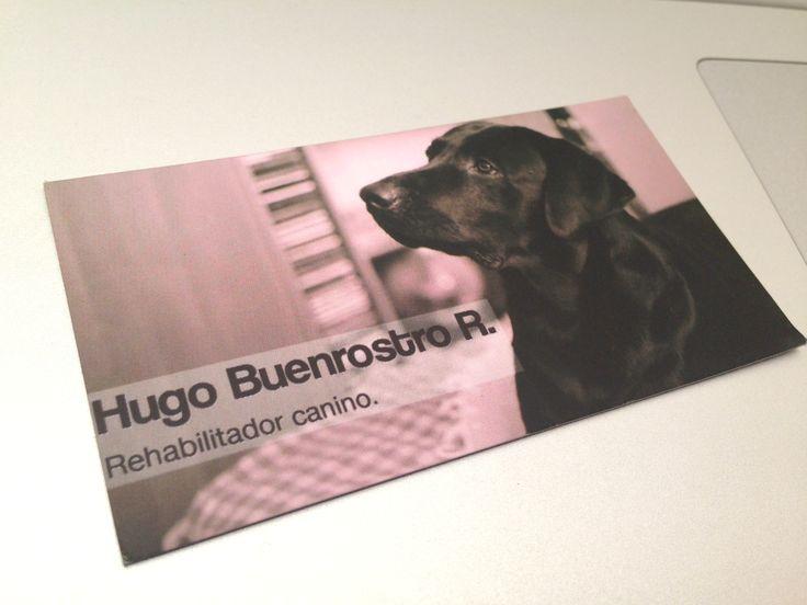 Toluca. ¡Entrenamiento Canino!  Tarjetas de presentación y fotografías.
