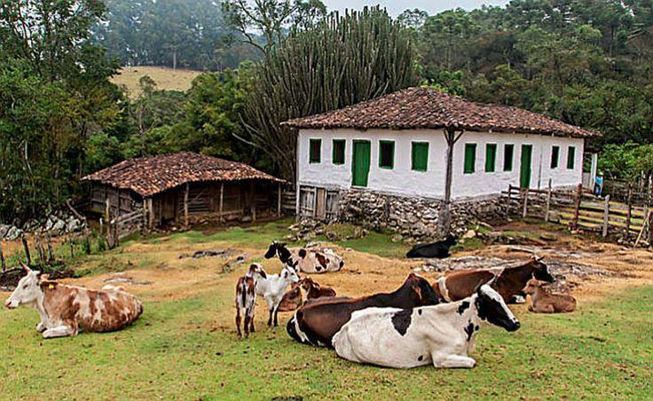 Ôw! Vontade danada que tenho de viver num lugar assim. Não ia nem me incomodar com o cheiro do estrume das vacas.