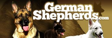 German Shepherd Dog Forums - Information about arthritis supplements