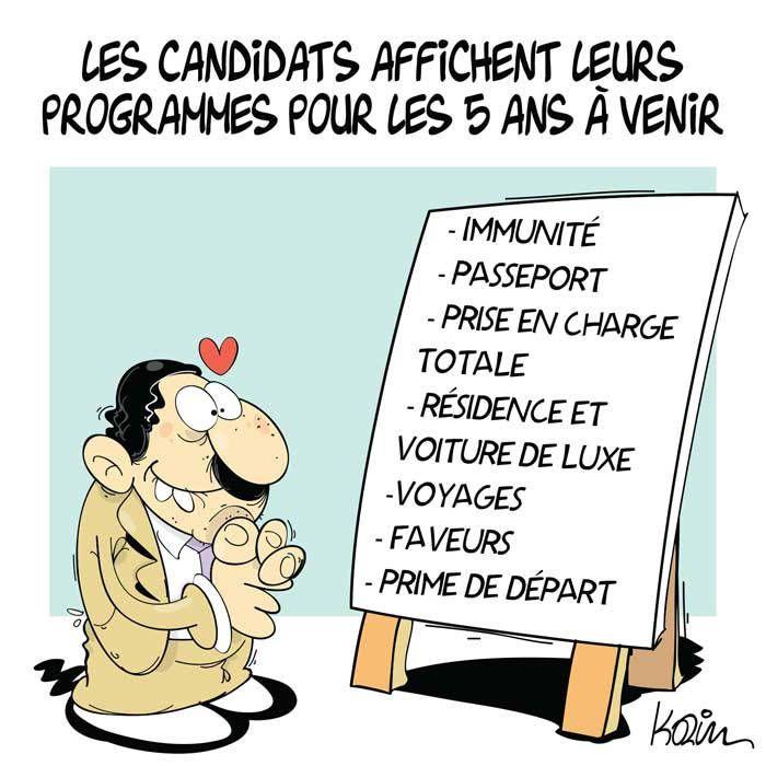 Karim (2017-04-26) Algérie : Les candidats affichent leurs programmes pour les 5 ans à venir -  programmes-candidats-legislatives.jpg (700×700)