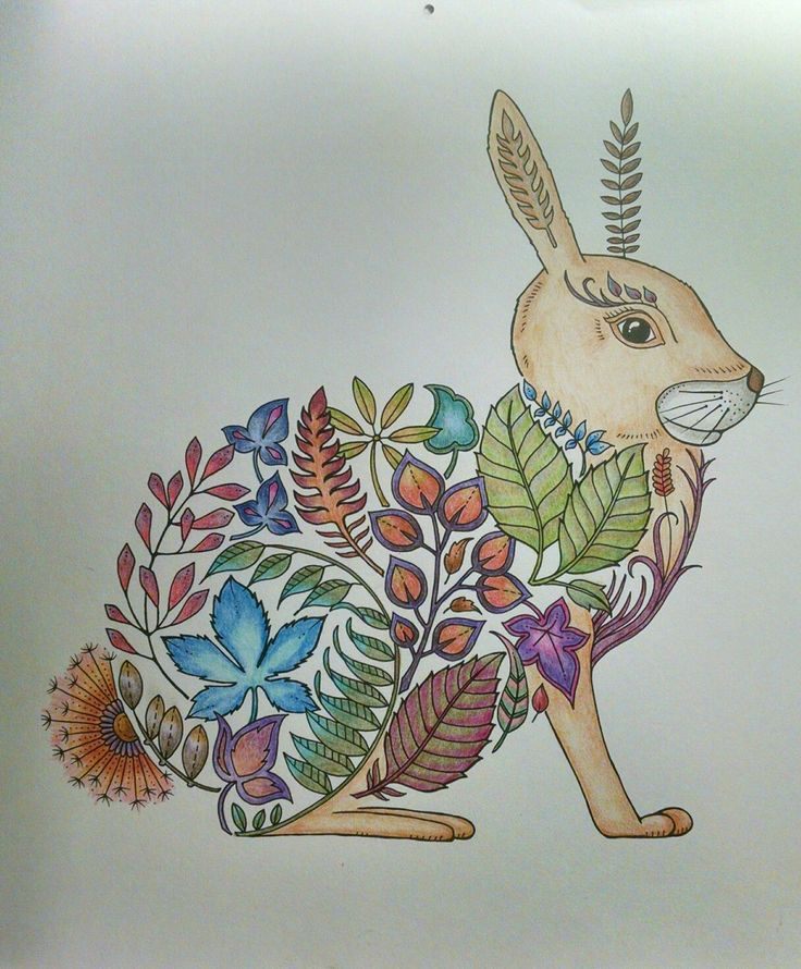 Coloringbook Colouringbook Amocolorir Adultcoloring Editorasextante Johanna Basford Enchanted Forest Rabbit By Wendy Basfordcoloring
