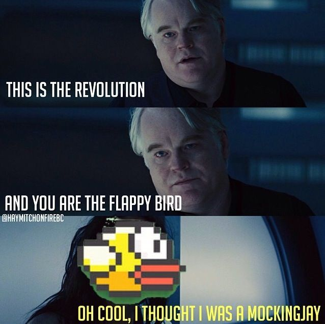 115 best catching fire funny images on pinterest the hunger flappy bird will never be the mockingjay ever at least as long as i am living voltagebd Gallery